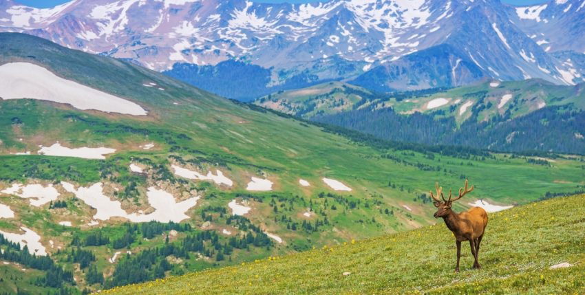 5 Tips For Driving Rocky Mountain National Park