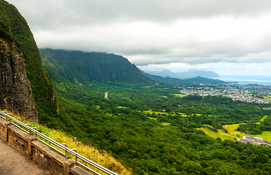 Oahu One Day Driving Tour
