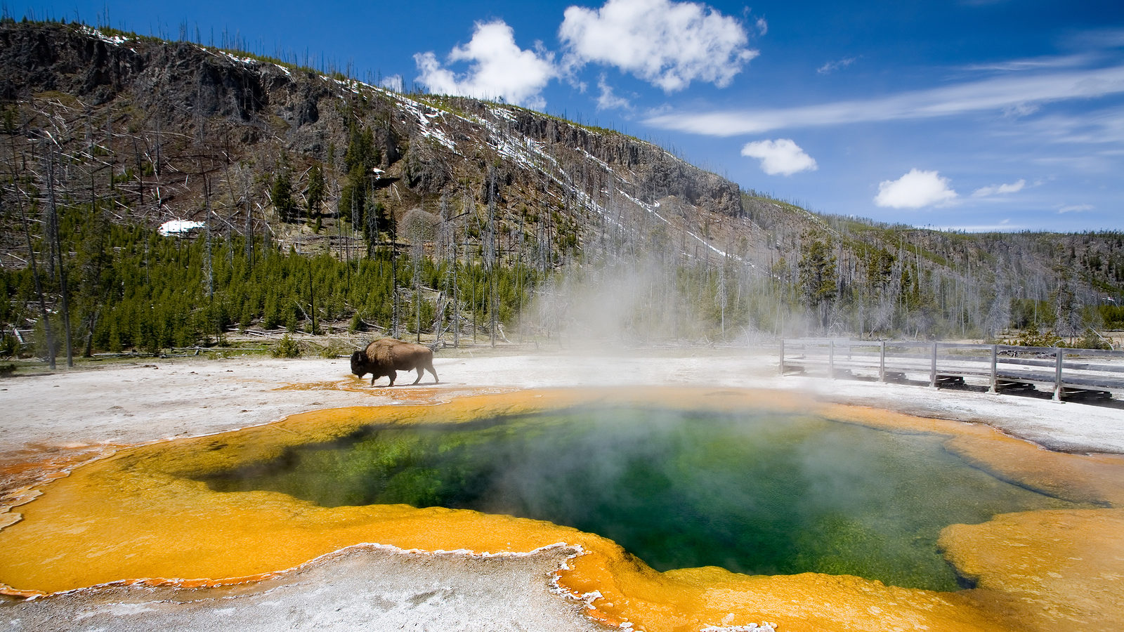 Yellowstone National Park GyPSy Guide Driving Tour App