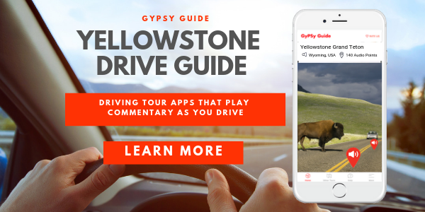 Drive Guide for Yellowstone and Grand Teton