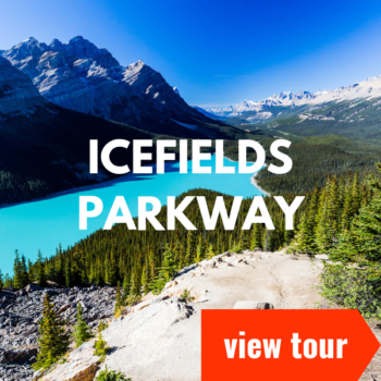 icefields parkway cta