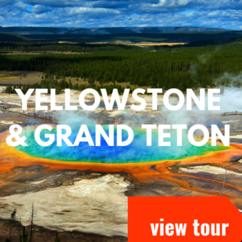 yellowstone cta