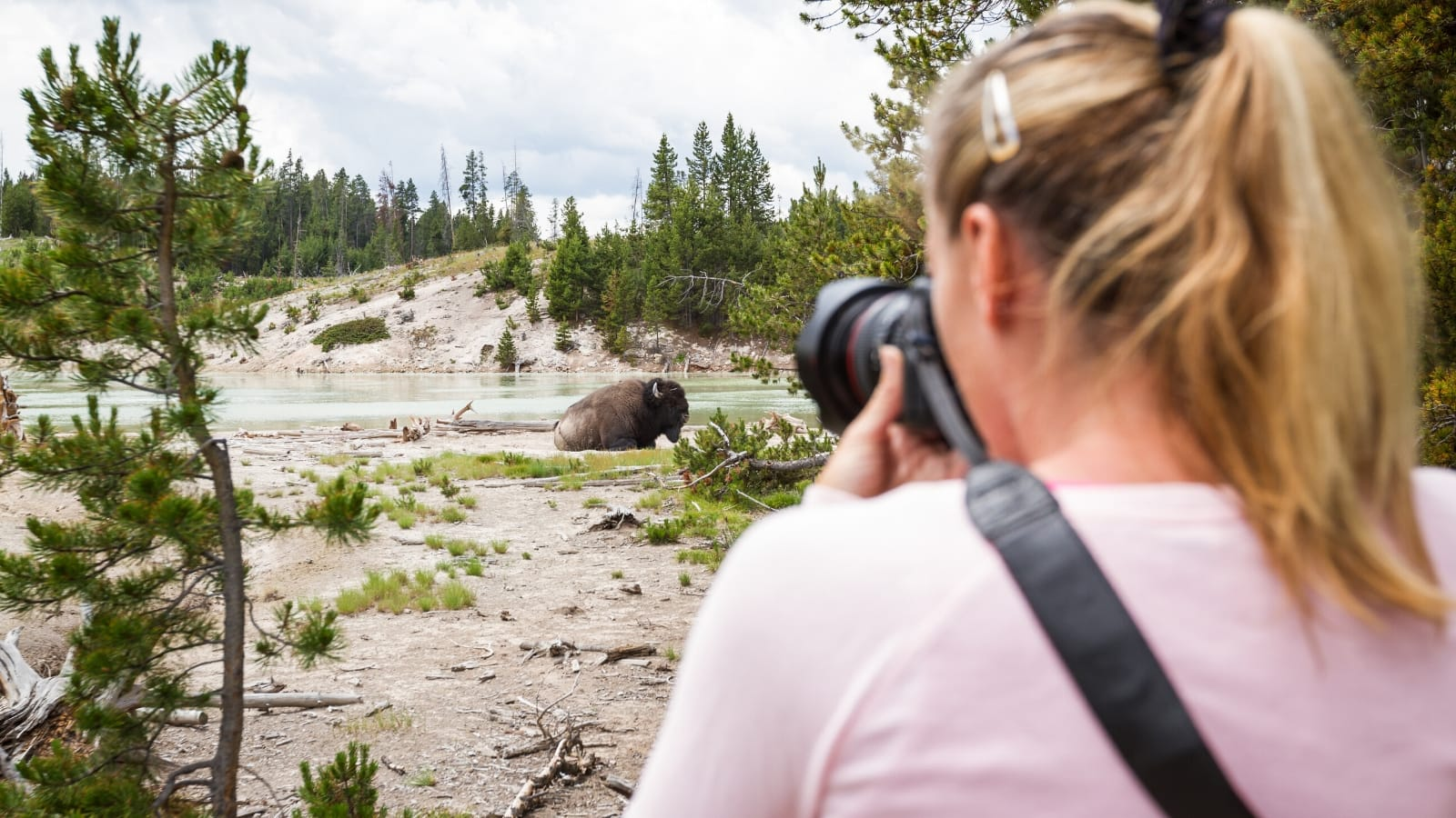 Yellowstone National Park with GyPSy Guide Driving Tour App